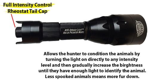 Ambush Lights®