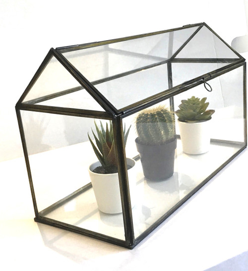 Glass House 1 Terrarium Rectangle