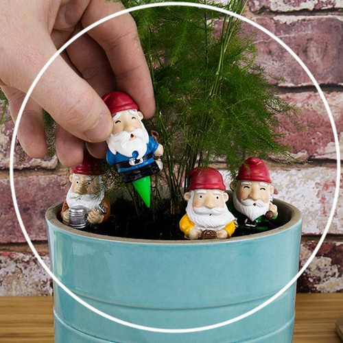 Mini Plant Pot Gnomes / Set of 4