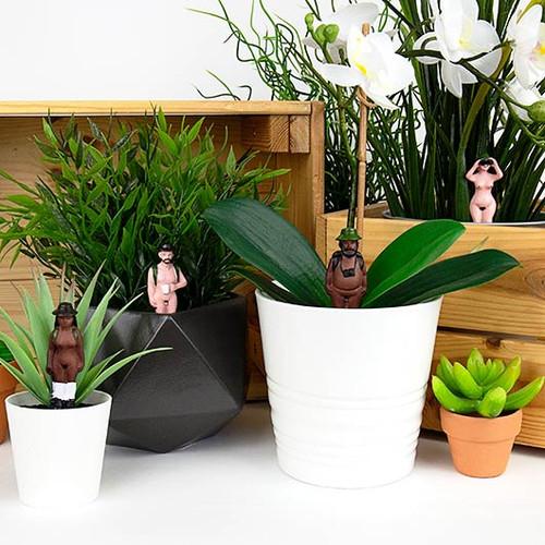 Mini Plant Pot Naked Ramblers / Set of 4