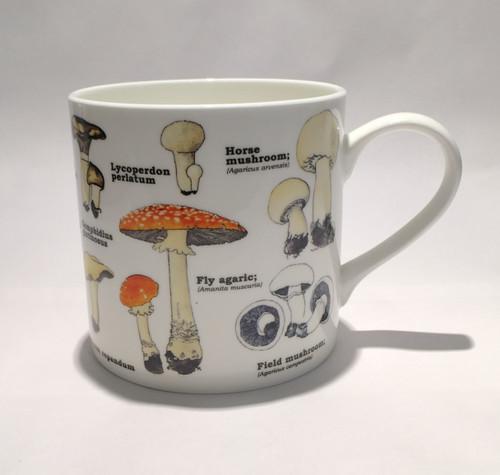Mushroom Varieties Mug