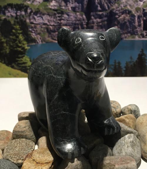 nunavik bear 14342 a