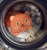 kikkerland handy cat laundry bag 2