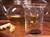 trendglas laser strainer teapot