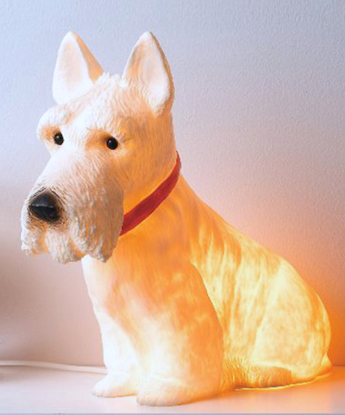 Scotty Light