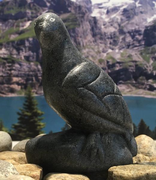 nunavik bird 38567 a