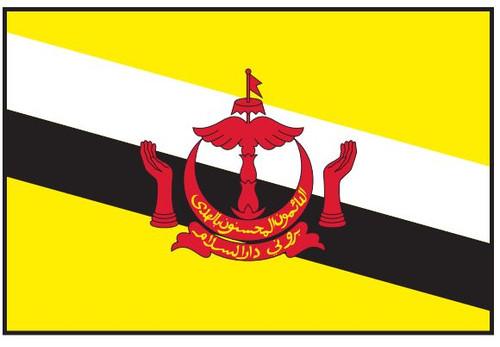 Brunei Flag Printed Nylon