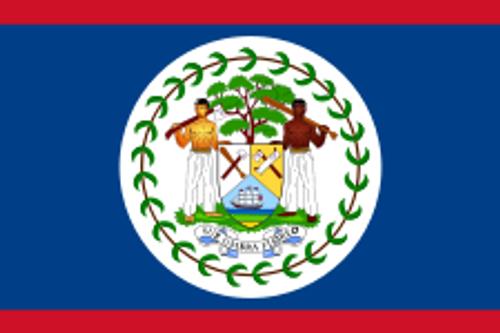 "Belize Courtesy Flag 12"" x 18"" Nylon"
