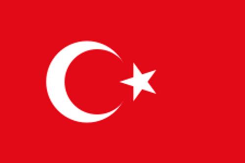 """Turkey Courtesy Flag 12"""" x 18"""" Nylon"""