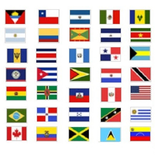 Complete Set of 35 OAS Member Nation's Flags