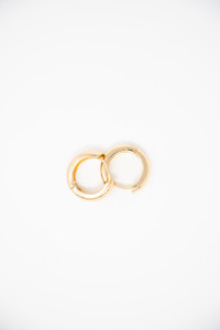 Gold Plated Circular Clasp Earring