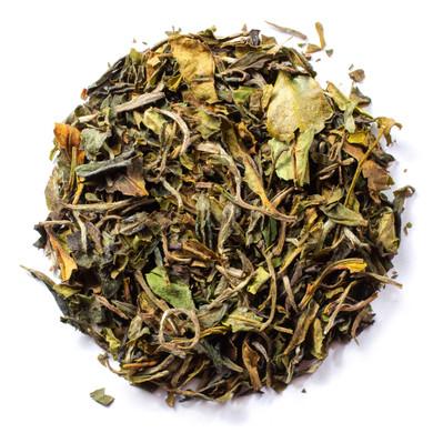 Organic Kumaon White Tea World Finest White Tea