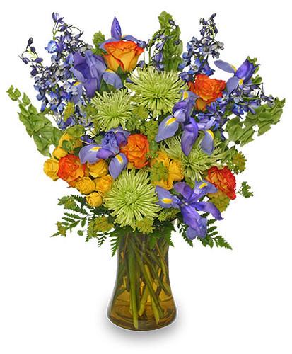 Floral Stunner