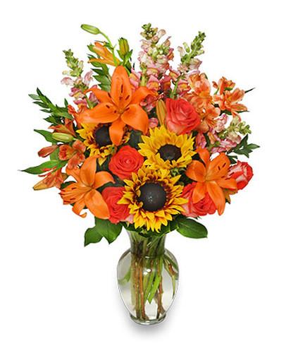 Fall Flower Gala
