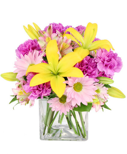 """ cube vase foliage: salal tips, leather leaf stems yellow lilies lavender carnations ('Moonshade') stems lavender daisy poms stems lavender & yellow alstroemeria"