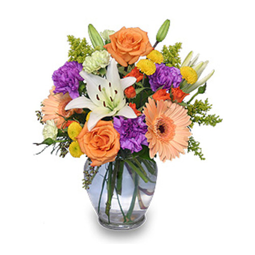CELEBRATE! Bouquet - Delivered Direct from Your Winnipeg Florists - Dragonfly Flowers