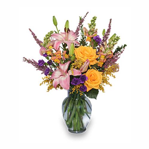 DAYDREAMS Summer Flowers