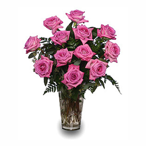 Pink Bliss Roses