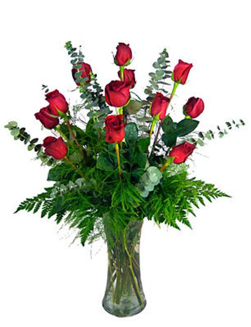 DRAGONFLY MODERN DOZEN RED ROSES