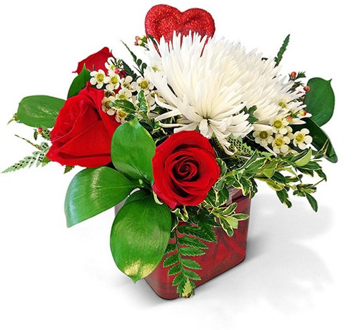 VD29 Ruby Red Roses Valentine's Day Arrangement