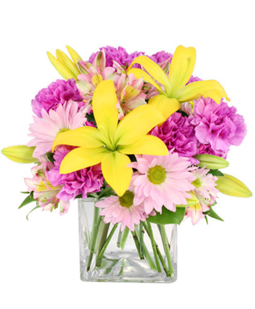 """"""" cube vase foliage: salal tips, leather leaf stems yellow lilies lavender carnations ('Moonshade') stems lavender daisy poms stems lavender & yellow alstroemeria"""