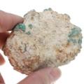 Gem Grade Turquoise Rough 21465