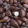 Rough Rubies Burmese Myanmar Ruby Gemstone 27021