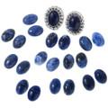 Native American Lapis Earrings 28619