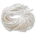 2 X 10mm White Shell Beads 16 inch Long Strand