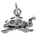 Sterling Silver Ladybug Charm 35421