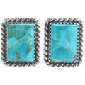 Kingman Turquoise Silver Earrings 28521
