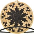 Papago Tribe Wall Basket Devil's Claw Pattern 31712