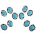 Western Turquoise Earrings in Silver Flower Frame 31753