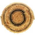Natural Grasses Woven Papago Native American Basket 32000