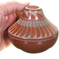 Hand Coiled Native American Pottery 40393
