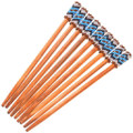 Authentic Navajo Made Beaded Colorful Hair Stick