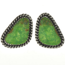 Green Turquoise Post Earrings 28964