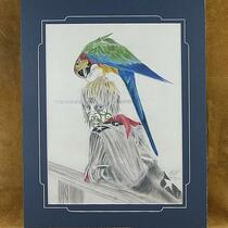 "Limited Edition ""Rodeo clown with his pet Macaw"" Canvas Print"
