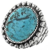 Ithaca Peak Turquoise Navajo Mens Ring 29676