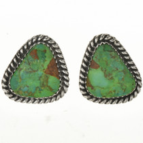 Green Turquoise Stud Earrings 28963