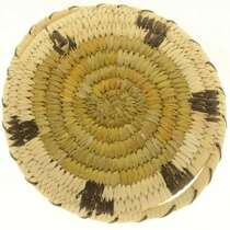 Indian Turtle Basket 27210