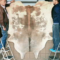 Vintage Brazilian Cow Hide 32951