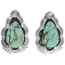 Matching Turquoise Earrings Necklace Set 34313