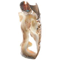 Zuni Bat Flower Fetish Carving 34969
