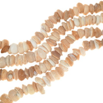 Graduated Natural Shell Beads 35009
