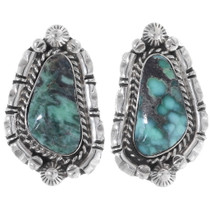 Royston Turquoise Earrings 35264