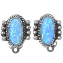 Native American Opal Earrings 35279