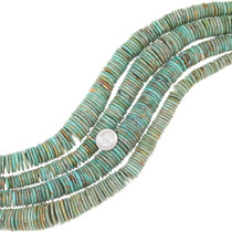 Graduated Turquoise Beads 35507