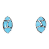 Sleeping Beauty Turquoise Stud Earrings 39573