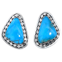 High Grade Blue Turquoise Earrings